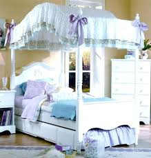 Girl Canopy Bedroom Sets Collection In Little Girl Canopy Bed With ...