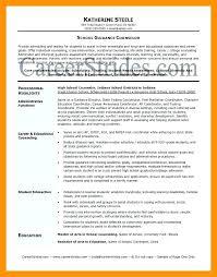 High School Counselor Resume Enchanting Career Counselor Resume Counselor Resume Sample College Career