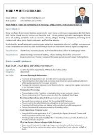 Banking Sales Sample Resume - Free Letter Templates Online - Jagsa.us