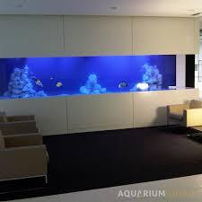 office aquarium. large bespoke marine office aquarium