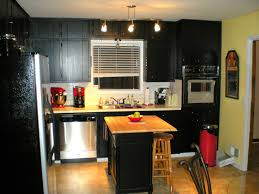 Kitchens with dark painted cabinets Awesome Image Of Black Cabinet Kitchen Smartsrlnet Gothic Black Kitchen Cabinets The New Way Home Decor