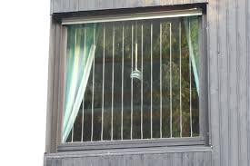 Vogeltod An Fenster Vermeiden Tipps Und Tricks Lbv