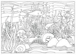 Small Picture Printable Fish Aquarium Scene Coloring Page Coloring for