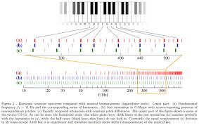 Entropy Based Tuning Of Musical Instruments