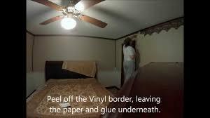 removing vinyl wallpaper border