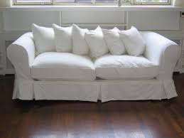 Wohnzimmer Couch Couch Covers Walmart Forls Potato Meaning Crossword Dogs