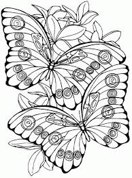 Small Picture 9 butterflies coloring pages resume pdf