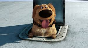 Real Life Talking Dug from Pixar's 'Up' Surprises Fans at Park ...