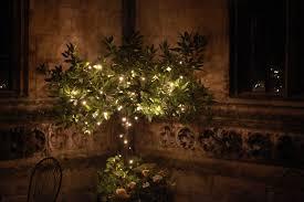 fairy lighting tree wrapping es wedding decor