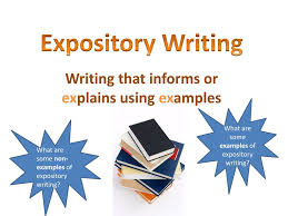 Expository Essay Format  Hamburger by Amber Mealey   TpT