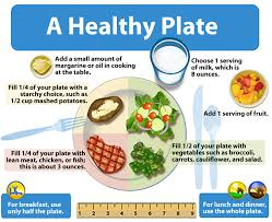 healthy food plate diagram. Modren Food Plate Model Showing Half The Plate Filled With Salad A Quarter Of  Intended Healthy Food Diagram L