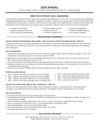 Resume Examples Marketing Resume Objective Examples Director Of