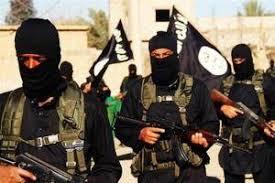 Image result for ر گروه تروریستی «داعش»