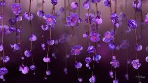 Purple Flowers Backgrounds Purple Flower Backgrounds Best Background Images Hd