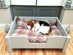 outdoor raised dog bed outdoor bed for dogs best wooden dog beds ideas on intended stylish outdoor raised dog bed
