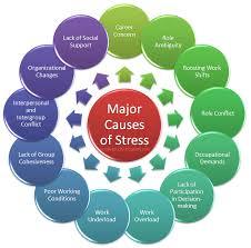 major causes of stress essay blog articles acircmiddot major causes of stress essay