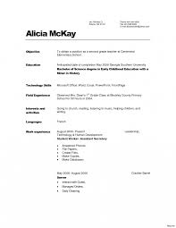 Day Care Director Resume Examples Child Traineeship Sample Cover