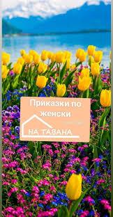 Dessert shop in sofia, bulgaria. Prikazki Po Zhenski Na Tavana Memo Sweet House Sladkata Ksha Na Memo Plovdiv 8 March 2021