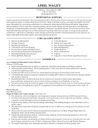 Copy Of Resume 19 Resume Copy Sample Writer Cv Template A Resumes