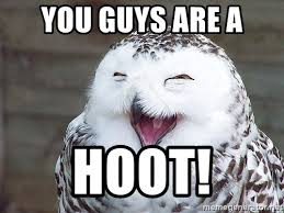 Image result for laughing owl