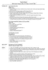 Sap Scm Resume Samples Velvet Jobs