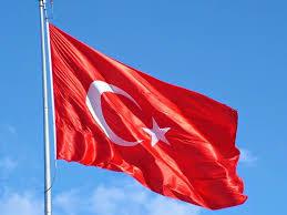 canlı türk bayrağı ile ilgili görsel sonucu
