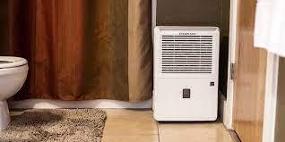 best dehumidifier for basement mutual