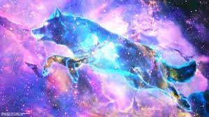 Cute Galaxy Wolf Wallpapers on WallpaperDog