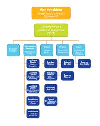 Richardson Charts Organizational Chart Office Of Diversity And Community