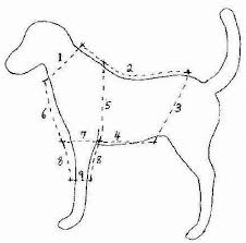 Dog Sewing Patterns Free Printable
