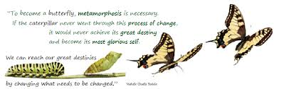 Metamorphosis Quotes Delectable One's Most Glorious Self Chaella's Inspiration