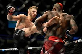 Image result for dan hooker ufc
