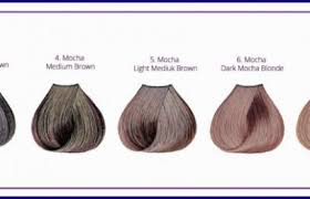 Ion Color Chart Mocha Hair Color Chart 23 Ion Color Brillance Mochas