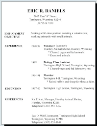 Government Resume Template Impressive Resume Format For Government Job Government Resume Example Resume