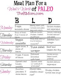 personal diet planner the paleo diet a beginners guide and meal plan