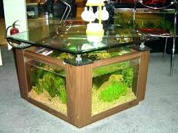 office fish tanks. Office Fish Aquarium Desk Tank Trendy Reception Custom Download Wallpaper Swimming Table Glass Tanks