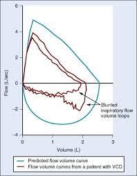 Peak Flow Chart Calculator Peak Expiratory Flow An Overview Sciencedirect Topics