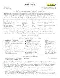 Resume Format Google Best Executive Resumes Best Executive Resume Format Google Templates