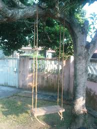 Tree Swing How To Diy A Simple Tree Swing 5 Steps With Pictures
