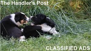 the handler s post