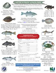 Nj Shore Tide Chart Nj Saltwater Fisherman Your 1 Source For Fishing In Nj