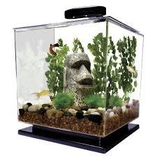 office aquarium. modren aquarium tetra fish cube aquarium kit 3 gallon aquascape tank tabletop lighted office  new for
