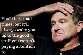 Robin Williams Quotes About Life Best Pin by Alex Jhonson on Hollywood Celebrities Pinterest Robin