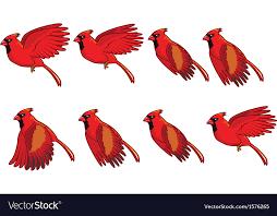 flying birds animation. Simple Birds Cardinal Bird Flying Animation Vector Image On Birds A
