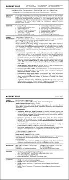 Pleasant Resume Information Technology Sample In Technology