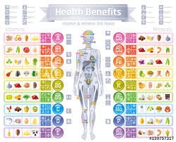 Foods Rich In Vitamins And Minerals Chart Mineral Vitamin Supplement Icons Health Benefit Flat Vector