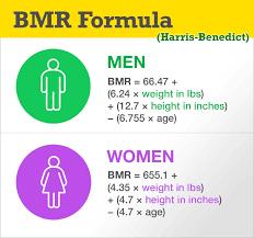 Basal Metabolic Rate Bmr Chart Bmr Formula Basal Metabolic Rate