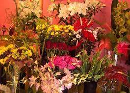 Image result for poczta kwiatowa katowice