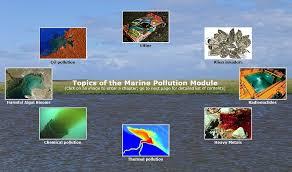essay types of pollution order custom essay online air pollution essay conclusion essay about air pollution