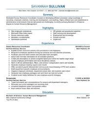 Human Resources Resume Example Unique Hr Coordinator Resume Example